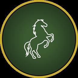 Gedragsproblemen bij paarden