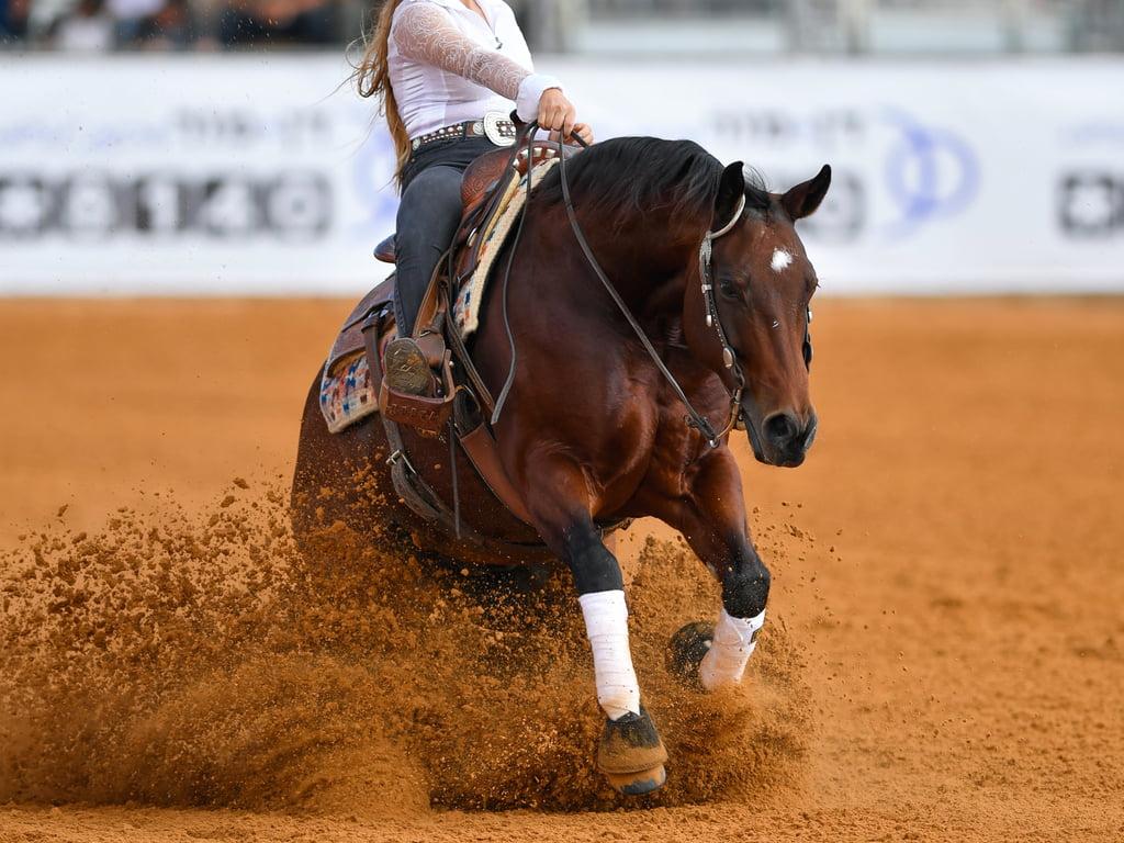 PSSM bij paarden